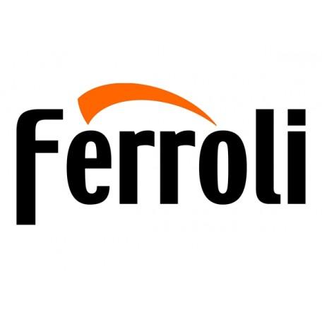 Ανταλλακτικά λεβητών ξύλου & pellet FERROLI
